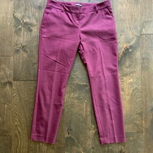 Express Columnist Pants in Plum
